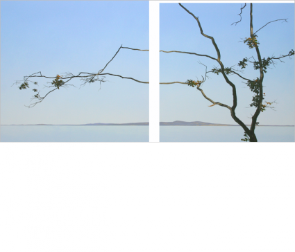 oak-branches-and-ocean