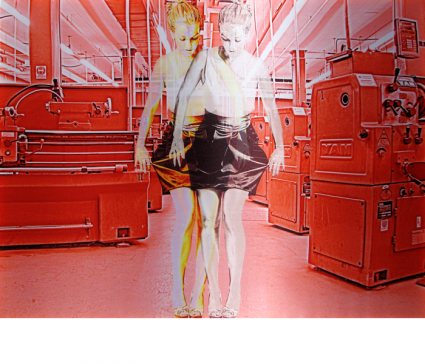 "(website) GL01 (Red Ruby, photo printed on satin, 40x53"", 2011)"